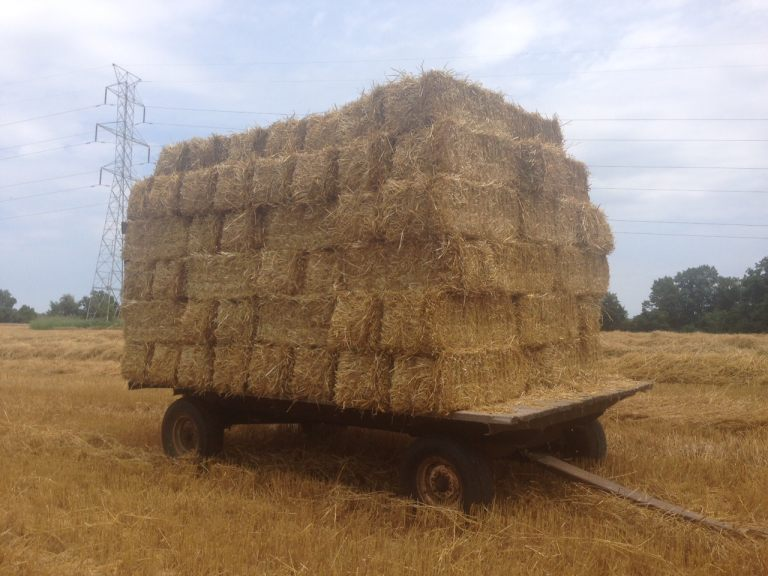 straw wagon